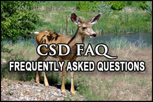 CSD FAQ